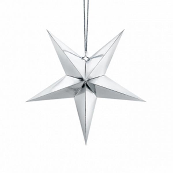 Pappstern Silber - 30 cm